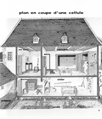 Coupe d'une cellule